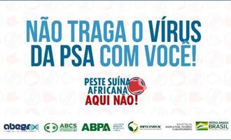 Campanha para evitar Peste Suína Africana no país ganha reforço nas redes sociais