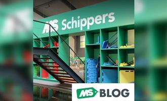 O que é o sistema de cores Schippers?