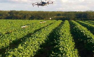 Automação ganha espaço em todas as etapas da agricultura brasileira