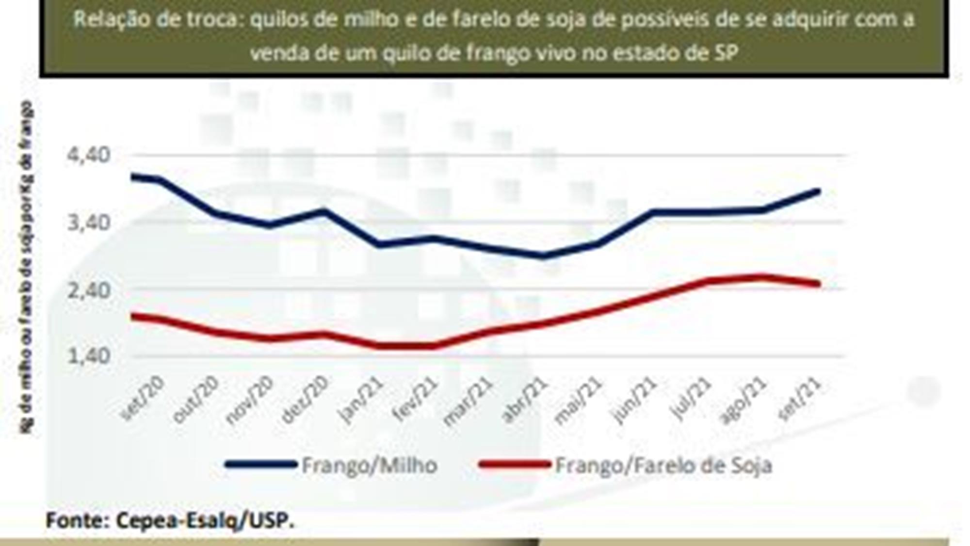 Apesar de recuos nos preços no final de setembro,  índice de negociação de carne de frango fecha em alta, Apesar de recuos nos preços no final de setembro,  índice de negociação de carne de frango fecha em alta