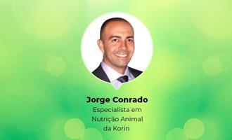 Em webinar, especialista da Korin trará experiência da empresa com o uso de proteínas de inseto na alimentação de aves
